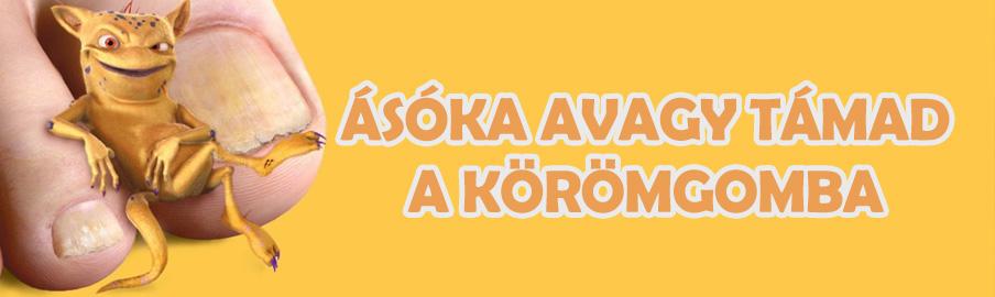 asoka-koromgomba